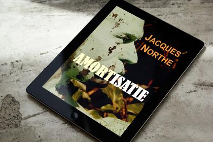 NortheAmortisatie